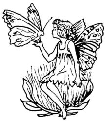 Fairy with Butterfly A242
