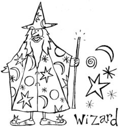 Large Wizard D5420